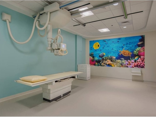 China Healthcare Flex Vinyl Flooring For Medical Environment factory